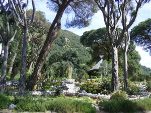 The Alameda Botanic Gardens - Gibraltar - 02