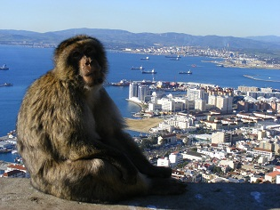 Gibraltar Pictures